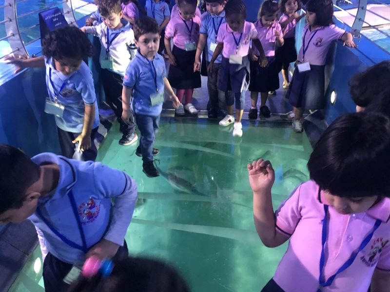 Pre-school in Sharjah